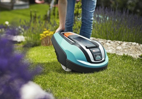 In 5 Schritten zum perfekten Rasen