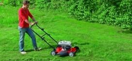 Gefährliche Situationen und Fallstricke beim Rasenmähen - so vermeiden Sie sicher Unfälle