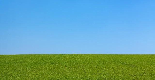 Englischer Rasen bis zum Horizont