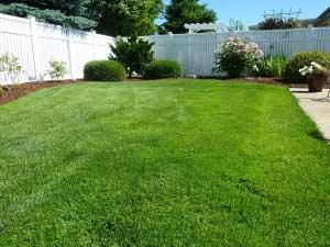 Rasenfläche gemäht