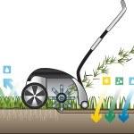 Wie repariere ich einen kaputten Rasen?