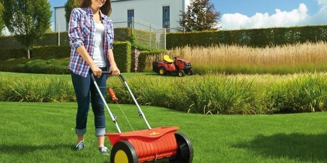 Tipps und Tricks um den Rasen zu sanden